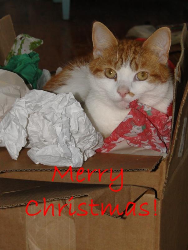 Christmas Ratchet