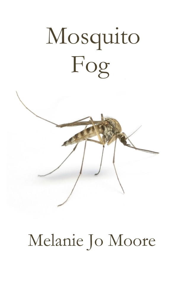 mosquito fog jpeg